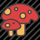 autumn, fall, forest, mushroom, nature icon