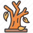autumn, fall, leaf, leaves, plant, tree icon