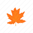autumn, cartoon, fall, leaf, maple, nature, season icon