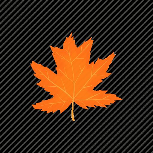 Autumn Cartoon Fall Leaf Maple Nature Season Icon Download On Iconfinder