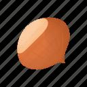 cartoon, food, hazelnuts, ingredient, natural, nut, organic icon