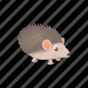 animal, cartoon, cute, funny, hedgehog, nature, wild