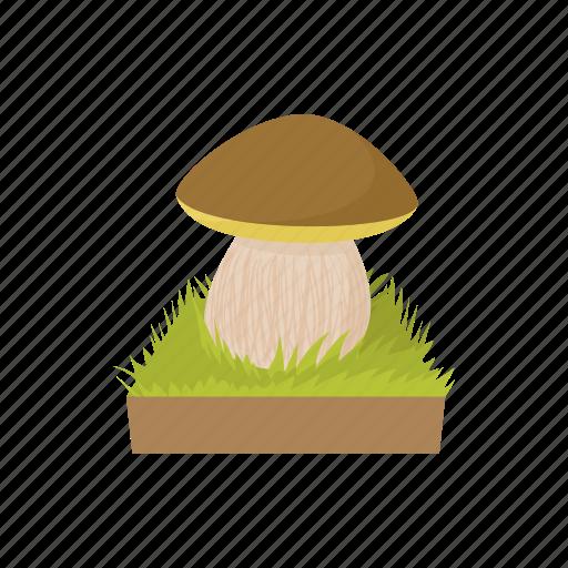 cartoon, food, fungus, healthy, ingredient, mushroom, nature icon