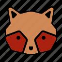 animal, face, head, raccoon icon