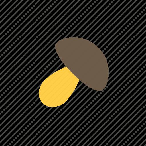 autumn, fall, mushroom icon