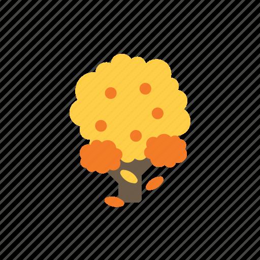 autumn, leaf, tree icon