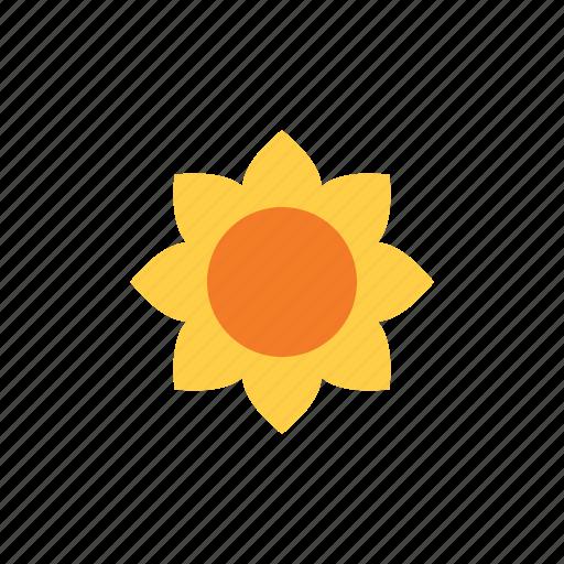 autumn, flower, sun icon