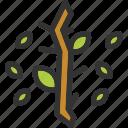 autumn, nature, tree, yard icon