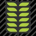 autumn, flower, leaf, leave icon