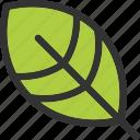 autumn, leaf, leave, nature icon