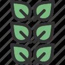 autumn, leaf, leave, leaves, nature icon