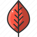 forest, garden, leaf, leaves, nature icon