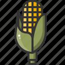 corn, farm, food, healthy, vegetable, vegetarian icon