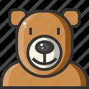 animal, avatar, bear, teddy, teddy bear, zoo icon