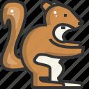 animal, avatar, nature, squirrel, user, wild icon