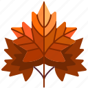 autumn, fall, garden, leaf, maple, nature, plant icon