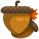 acorn, autumn, food, healthy, oak, squirrel icon