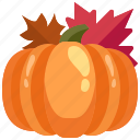diet, food, healthy, organic, pumpkin, vegan, vegetarian icon