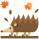 animal, animals, kingdom, life, porcupine, wild, zoo icon