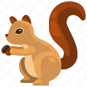 animal, life, rodent, squirrel, wild, zoo icon