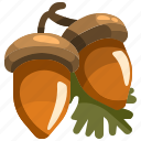 acorn, autumn, food, healthy, nature, oak, squirrel icon