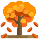 season, fall, leaf, botanical, tree, autumn, garden