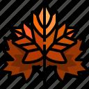 autumn, fall, garden, leaf, maple, nature, plant icon