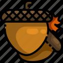acorn, autumn, food, healthy, oak, squirrel