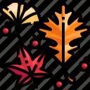 autumn, fall, garden, leaf, plant