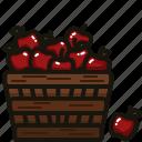 apple, food, fresh, fruit, healthy, sweet icon