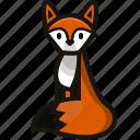 animals, dog, fox, pet icon