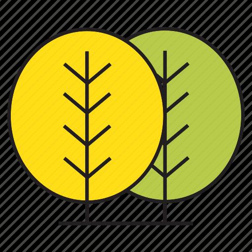 autumn tree, blossom, bush, forest, nature, plant, tree icon