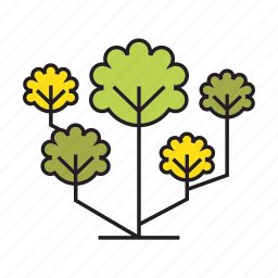blossom, flora, forest, nature, plant, spring, tree icon