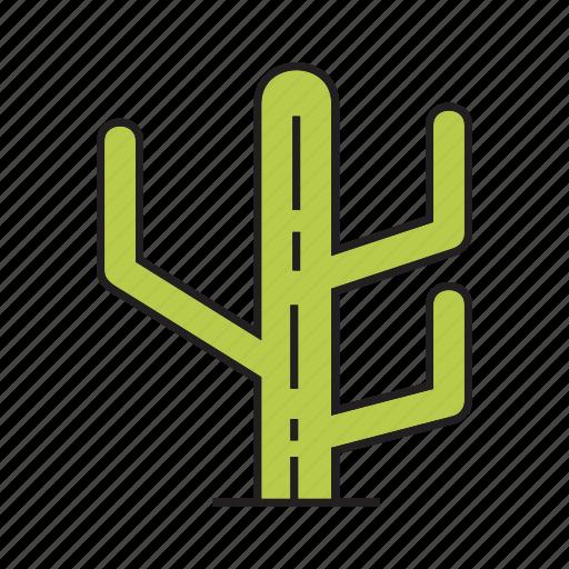 cactus, desert, forest, nature, plant, tree icon