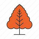 autumn, autumn tree, forest, nature, plant, spring, tree icon