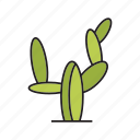 cactus, desert, forest, palm, plant, tree icon