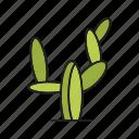 cactus, desert, forest, palm, plant, tree