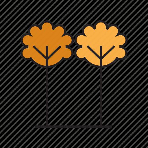 autumn, autumn tree, flora, forest, nature, plant, tree icon
