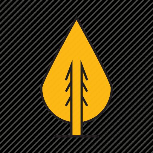 autumn, autumn tree, forest, nature, pine, plant, tree icon