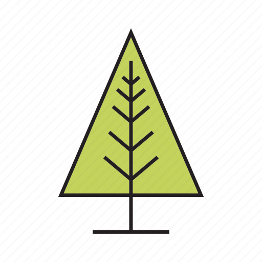 chirstmas tree, flora, forest, nature, pine, plant, tree icon