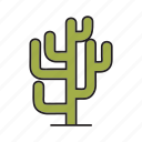 cactus, desert, forest, nature, plant, tree icon