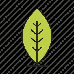 bush, flora, forest, leaf, nature, plant, tree icon