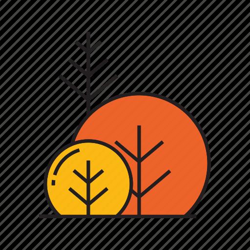 autumn tree, blossom, bush, forest, plant, spring, tree icon