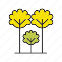 autumn, autumn tree, flora, forest, nature, plant, tree icon