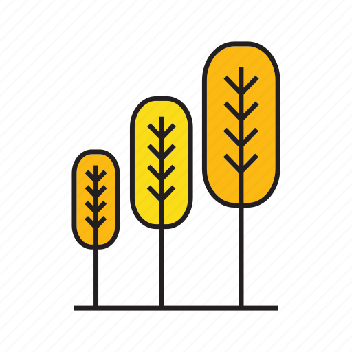 autumn, flora, forest, nature, pine, plant, tree icon