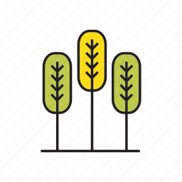 autumn tree, blossom, forest, nature, pine, plant, tree icon