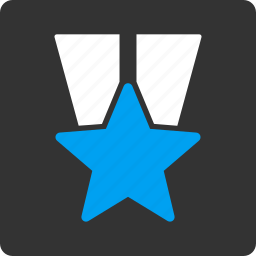 medal, star icon