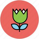 beauty, creative, flower, tulip icon