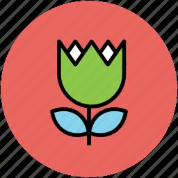 beauty, creative, flower, tulip icon