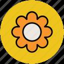 beauty, flower, round, shape icon